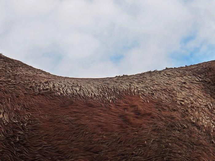 Photographie de Michel Friz - Lignes de crête 2
