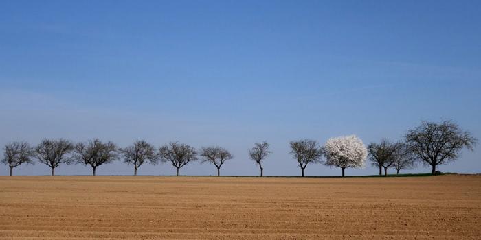 Photographie de Michel Friz - Faire un détour, une question de point de vue 2